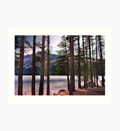 Lake Tenaya Art Print