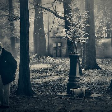 Walking with the dog by birba