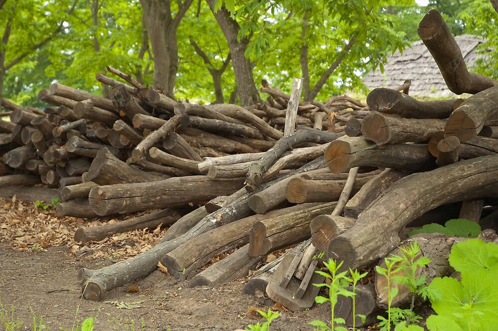 Firewood by komashyaru