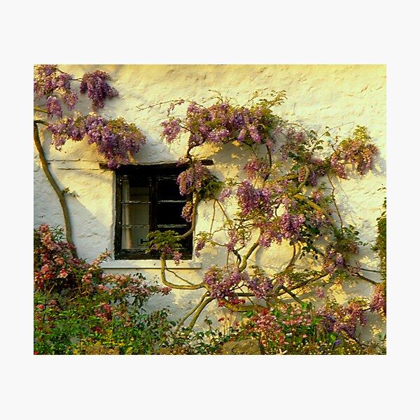 Lustleigh Cottage Photographic Print