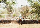 Cattle Mustering Paint 2 by Candice O'Neill