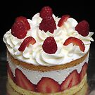 Berries and Cream Cake by tali