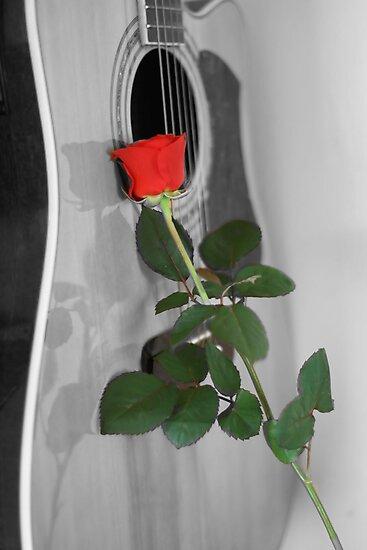 The Romance of Music by Pamela Jayne Smith