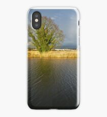 Tree on the Exeter canal bank iPhone Case/Skin