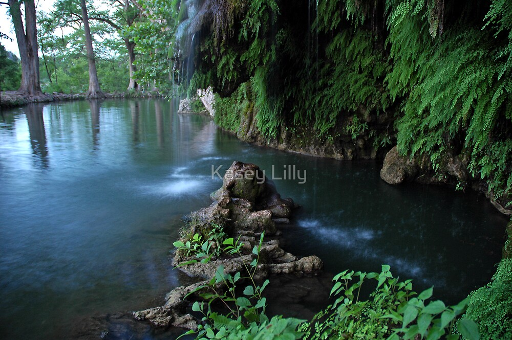 Quot Krause Springs Tx Quot By Kasey Lilly Redbubble