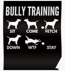 Bully Training English Bull Terrier Tricks Poster