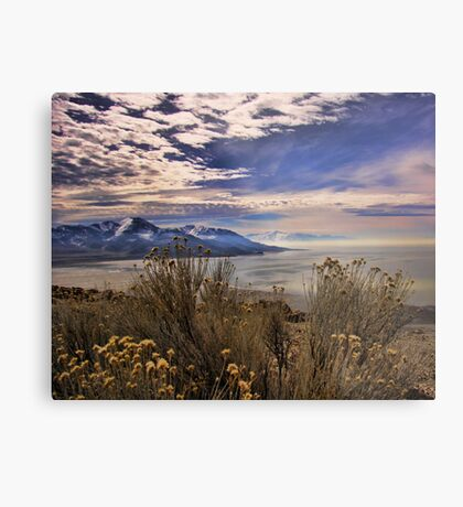 Antelope Island Metal Print