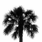 Naked Palm by David Lee Thompson