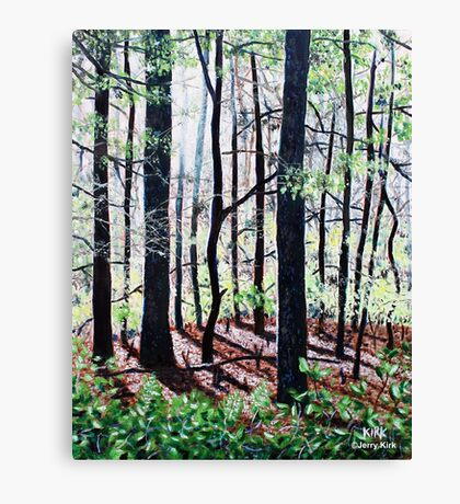 'Deep Woods Along the Glen Burney Trail'  Canvas Print