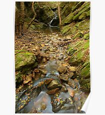 Autumn stream in Provence Poster