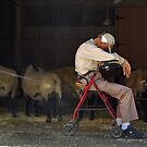 San Diego Wild Animal Park--Taking a nap  by milton ginos