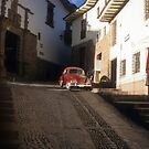 Cusco Beetle #1 by Alexh