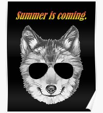 Summer is coming Poster