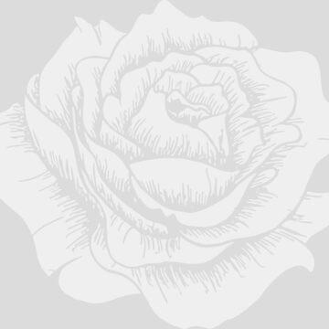 White Rose on Grey by FayeLangoulant