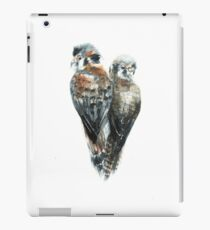 Birds of Prey iPad Case/Skin