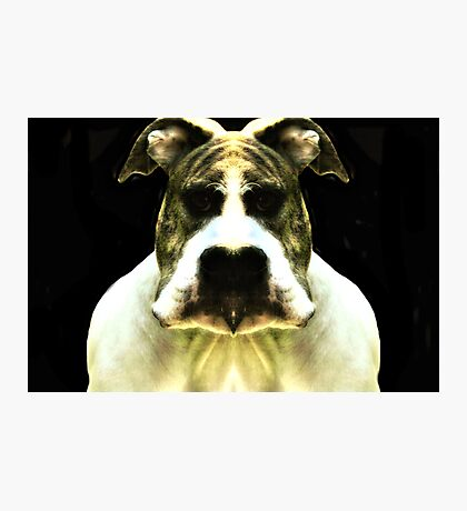 Big Funny Head Photographic Print