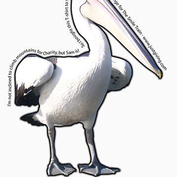 Yvette's lovely pelican! by sambo999