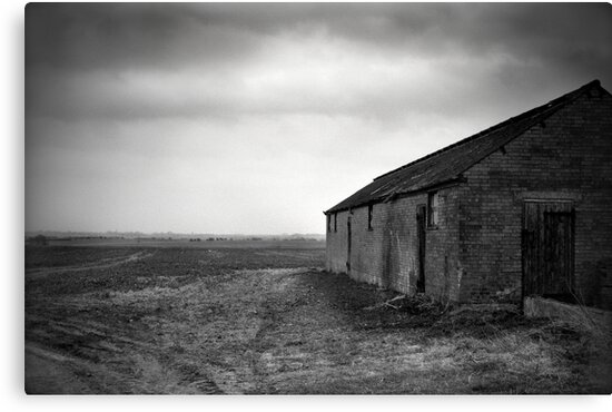 Stormy Fens by Jacqueline Baker