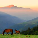 Sunrise in the Pyrenees by sandgrouse