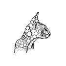 Black Fractal Sphynx by Selendripity