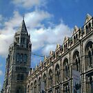 Natural History Museum. by Marie Brown ©