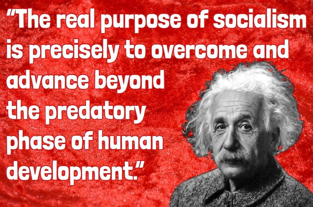 why socialism einstein amazon