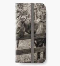 Equine Adoration iPhone Wallet/Case/Skin