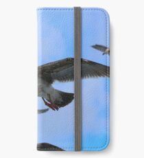 Many Seagulls iPhone Wallet/Case/Skin