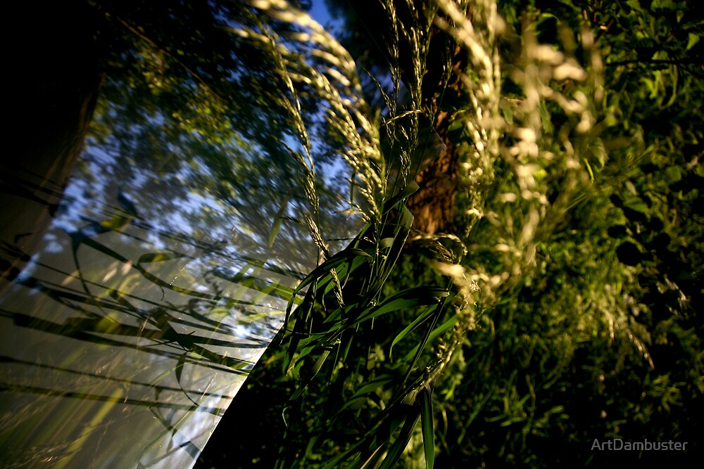 Mirror of nature by ArtDambuster