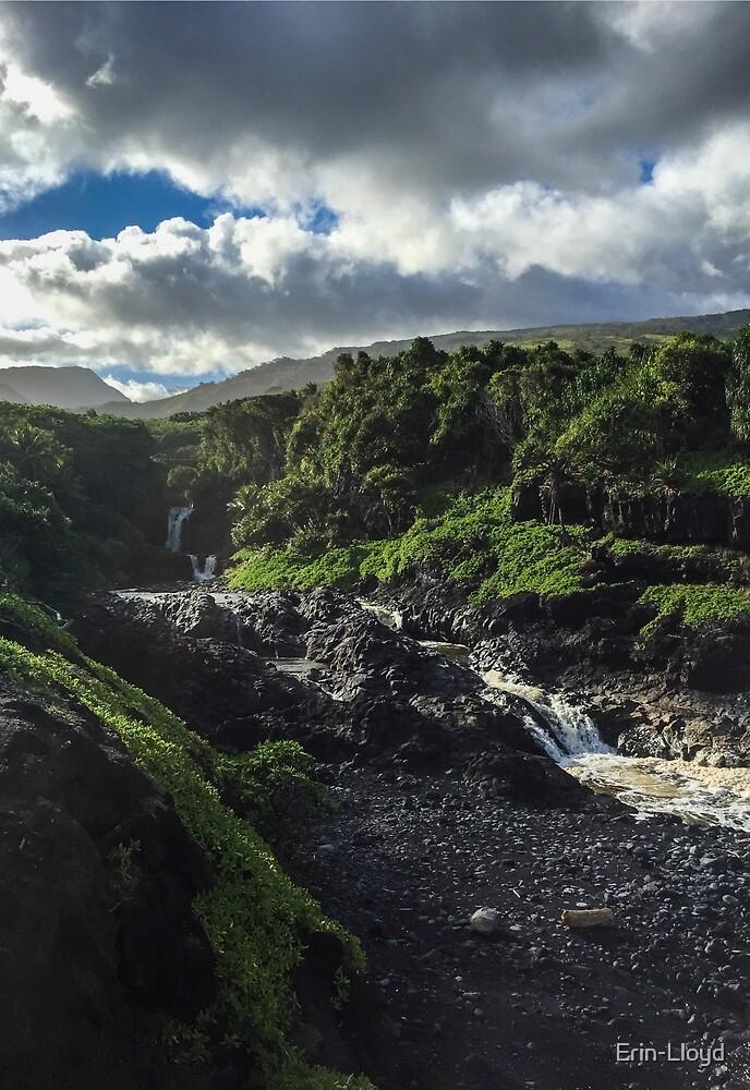 Maui Waterfall by Erin-Lloyd
