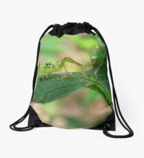 Teensy Weensy Spider  Drawstring Bag