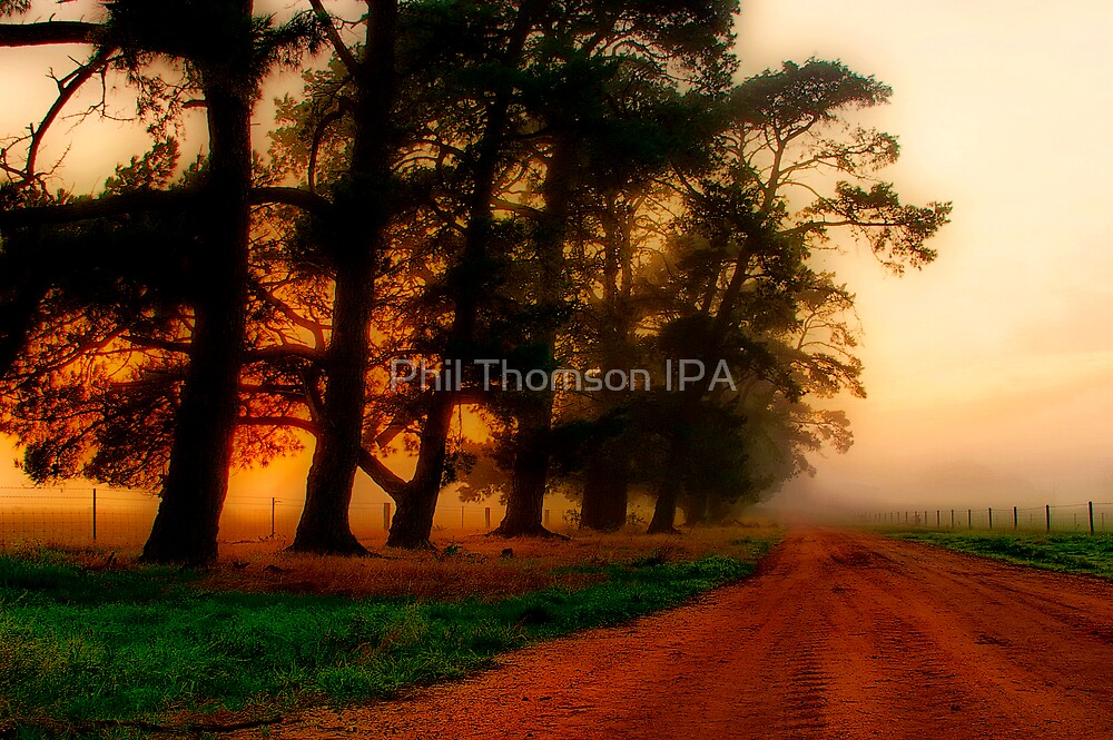 """""""The Mood of the Morning"""" by Phil Thomson IPA"""