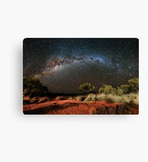Spinifex and Stars Canvas Print
