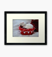 My Basket of Love Framed Print
