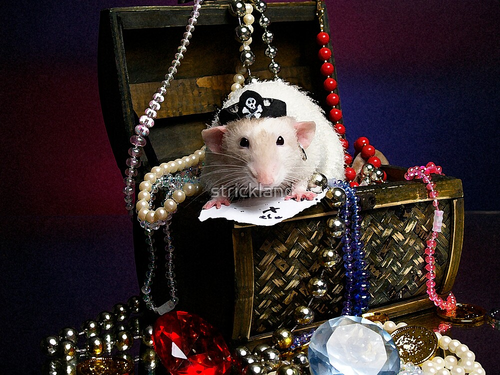 Pi-rat-e  Huxley by strickland