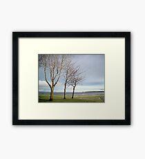 Che Vista Framed Print