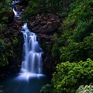 Puohokamoa Waterfalls  in Maui, Hawaii by Yen Baet