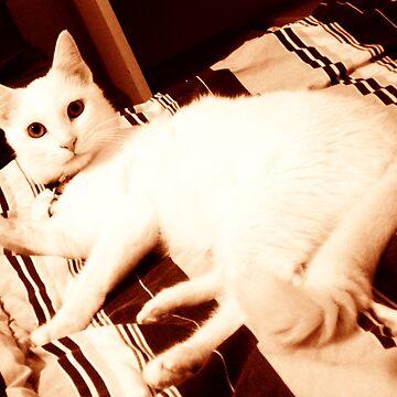 Casper by sarah90