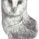 Uncommon Barn Owl by ReWin