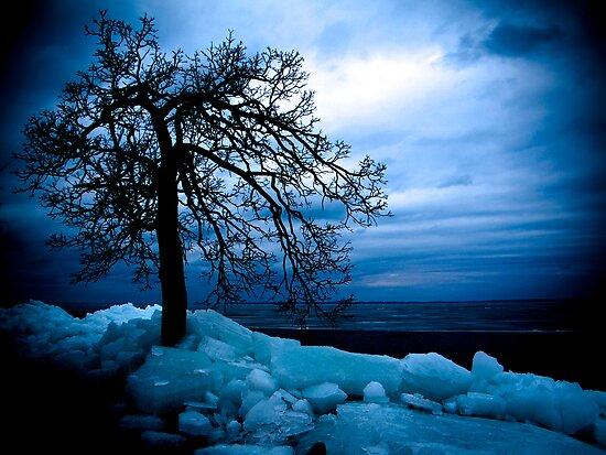 Retreating Ice by Jigsawman