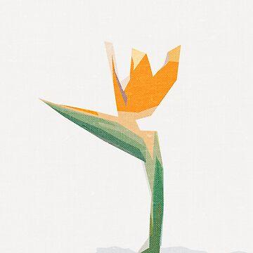 Wild and exotic flowers - minimalist by soycarola