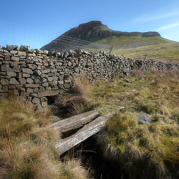 Pen-y-ghent by SteveMG