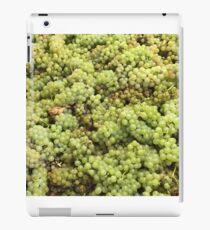 Grapes iPad Case/Skin