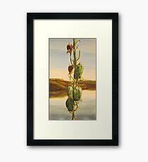 Prairie Life Framed Print