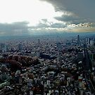 Tokyo from Mori Tower by wilderpisces