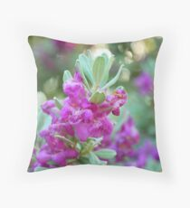 Texas Sage Full Bloom Throw Pillow