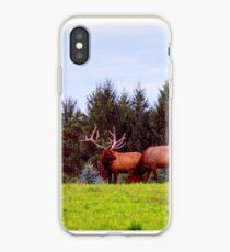 Huge Bull Elk iPhone Case