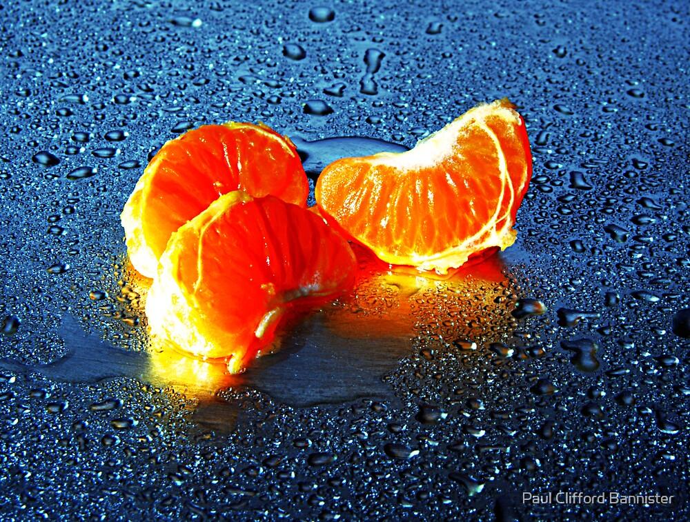 Orange Zest by Paul Clifford Bannister
