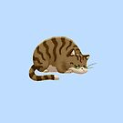 Chubby Grumpy Kitty (Tabby) by ArtOfSkuba