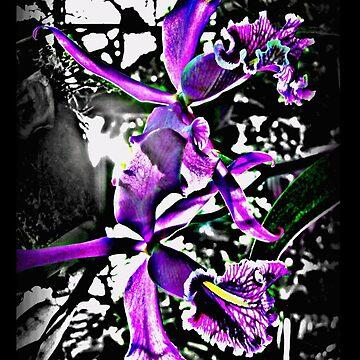 Orchids - case by lial